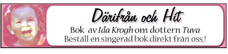 En bok av ida Krogh
